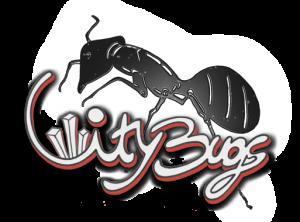 big_bug