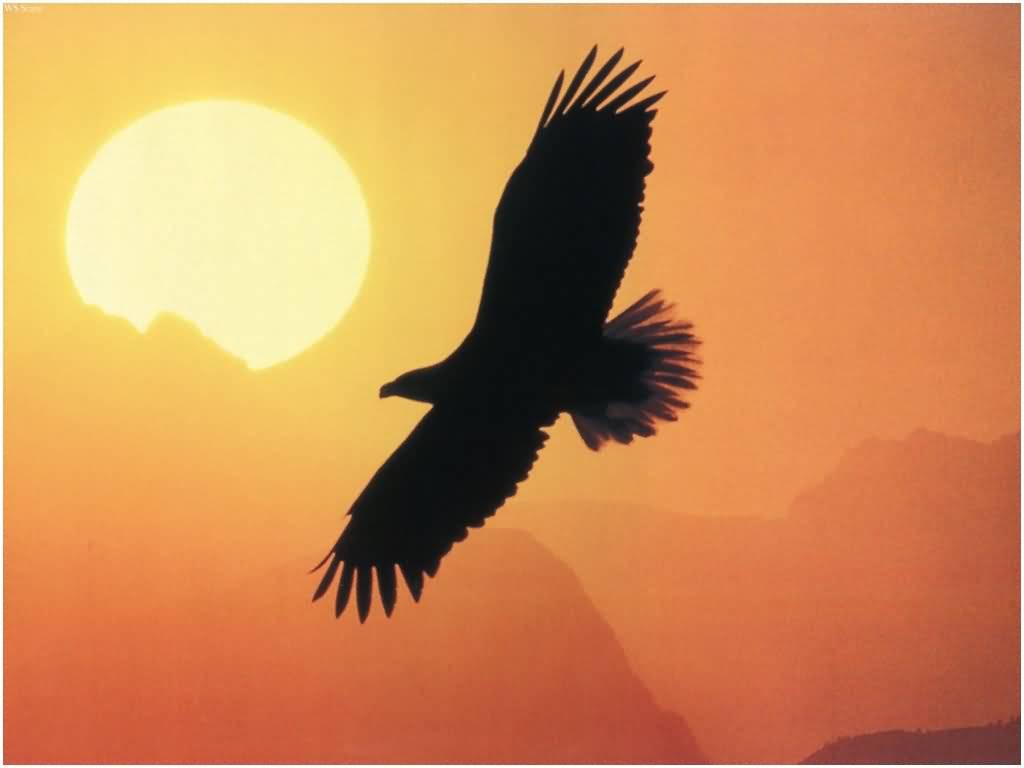 aquila_tramonto